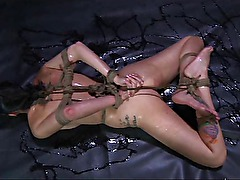 BDSM Perverts Slave Hailey Young Oiled and Fisted in Bondage