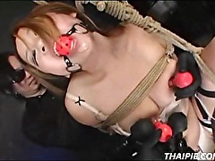Asian Ball Gagged And Nipple Clamped